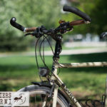 surly-ateliers-fourmi-7401