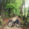surly-ECR-Rohloff-ateliers-fourmi-093840